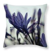 Agapanthus - Love Flower -2  Throw Pillow