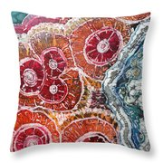 Agate Inspiration - 16a Throw Pillow