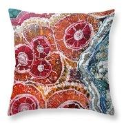 Agate Inspiration - 16a Throw Pillow