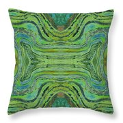 Agate Inspiration - 24 B  Throw Pillow
