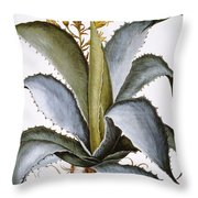Agave, 1613 Throw Pillow