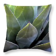 Agave 5 Throw Pillow