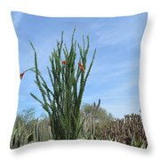 Agave And Cactus Throw Pillow