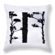 Agave And Palm Throw Pillow