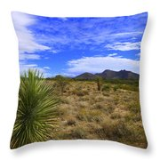 Agave And The Mountains 3 Throw Pillow