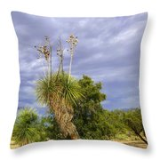 Agave Cactus And A Purple Sky Throw Pillow