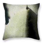 Agave Impression Four Throw Pillow