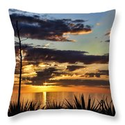 Agave Sunset Throw Pillow
