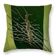 Agave Tattoo Throw Pillow
