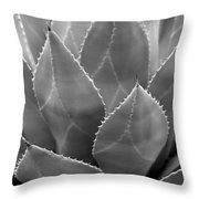 Agave Tucson Airport Throw Pillow