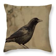 Age Old Crow  Throw Pillow