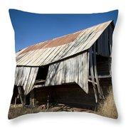 Aged But Not Forgotten Throw Pillow