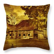 Aged Rustic Beauty Throw Pillow