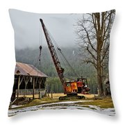 Aged To Perfection Throw Pillow