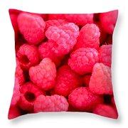 Agenda For Today ... Raspberry Jam Throw Pillow by Gwyn Newcombe
