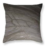 Aging Aggregate Throw Pillow