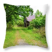 Aging Barn In Woods Throw Pillow