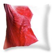 Aging Beautifully Throw Pillow