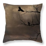 Aging Colors Throw Pillow