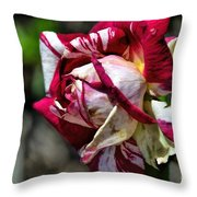 Aging In Oil Throw Pillow