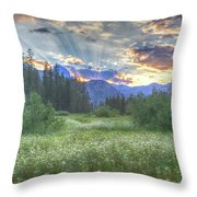 Agnew's Sunset Throw Pillow