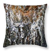 Agony And Ecstasy Throw Pillow