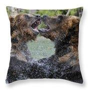 Agree To Disagree Throw Pillow