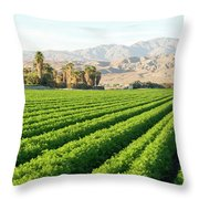 Agriculture In The Desert Throw Pillow
