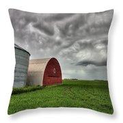 Agriculture Storage Bins Granaries Throw Pillow
