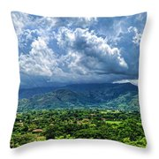 Aguirre Valley Throw Pillow