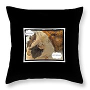 Ahh Guinea Pig Greetings Throw Pillow