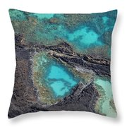 Ahihi Kinau Natural Preserve Throw Pillow