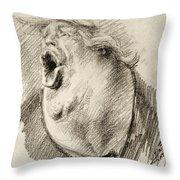 A..hole Throw Pillow