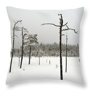 Ahvenlammi 10 Throw Pillow