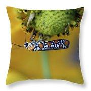 Ailanthus Webworm Moth #6 Throw Pillow
