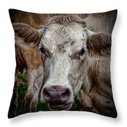 Ain't She Beautiful Throw Pillow