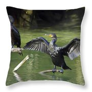 Air Dry Throw Pillow