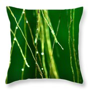 Air Roots Orchid Throw Pillow