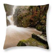 Aira Force High Water Level Throw Pillow
