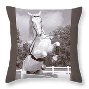 Airs Above The Ground - Lipizzan Stallion Rearing Throw Pillow