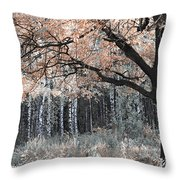 Airy Autumn In Woods Throw Pillow