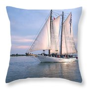Aj Meerwald Sailing Up River Throw Pillow