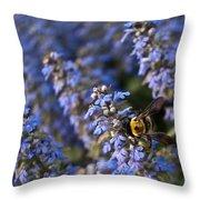 Ajuga And Bumblebee Throw Pillow