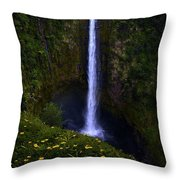 Akaka Falls Throw Pillow