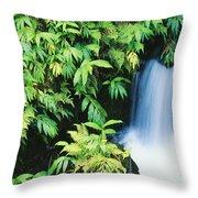 Akaka Falls State Park Throw Pillow