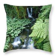 Akaka Falls Stream Throw Pillow