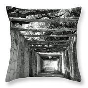 Alamo Corridor Throw Pillow