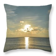 Wings Of The Sun Throw Pillow