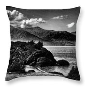 Alaska Bw Grain  Throw Pillow