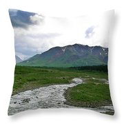 Alaska Denali National Park Landscape 1 Throw Pillow